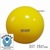 GYMNIC ギムニク イタリア製 バランスボール ギムニク・バランスボール45cm (GY95-45)