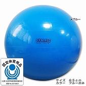 GYMNIC ギムニク イタリア製 バランスボール ギムニク・バランスボール65cm (GY95-65)