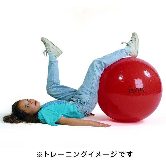 自転車の 自転車 空気入れ ボール用 : ... ボール(エクササイズボール