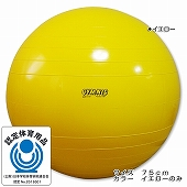GYMNIC ギムニク イタリア製 バランスボール ギムニク・バランスボール75cm (GY95-75)