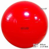 GYMNIC ギムニク イタリア製 バランスボール フィジオギムニク ギムニク・バランスボール85cm (GY95-85)