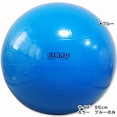 GYMNIC ギムニク イタリア製 バランスボール フィジオギムニク ギムニク・バランスボール95cm (GY95-95)*7月下旬入荷予定