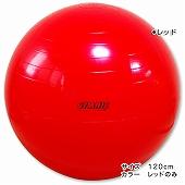 GYMNIC ギムニク イタリア製 バランスボール フィジオギムニク ギムニク・バランスボール120cm (GY95-98)