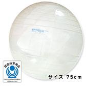 GYMNIC ギムニク イタリア製 バランスボール オプティボール75cm (GY96-75)