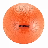 GYMNIC ギムニク イタリア製 バランスボール ソフトプレイ バスケットボール Softplay Basket 【3歳以上対象】 (GY82-13)