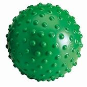 GYMNIC ギムニク イタリア製 バランスボール アクボール Aku Ball (GY97-53)