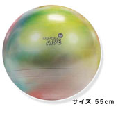 GYMNIC ギムニク イタリア製 バランスボール ギムニク アルテ 55cm Gymnic Arte 55 BRQ (GY95-35)