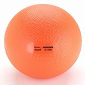GYMNIC ギムニク イタリア製 バランスボール ヘビーメディシンボール 5kg Med Ball 5 (GY97-35)